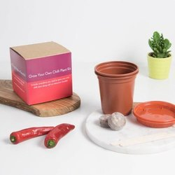 Grow Your Own Red Habanero Chilli Plant Kit Gift