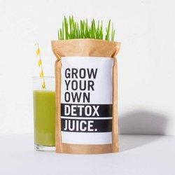 Grow Your Own Wheatgrass Detox Juice Kit Gift