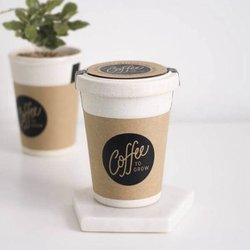'Coffee to Grow' Grow Your Own Arabica Coffee Plant Gift Kit