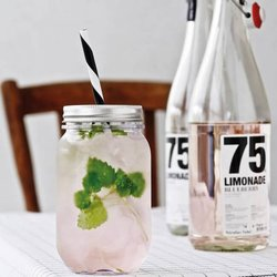 Plastic Jam Jar Drink Glass with Paper Straw