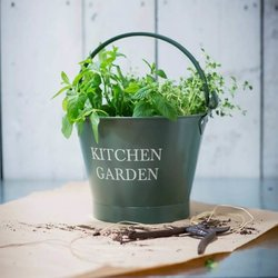 Green Vintage Kitchen Garden Bucket