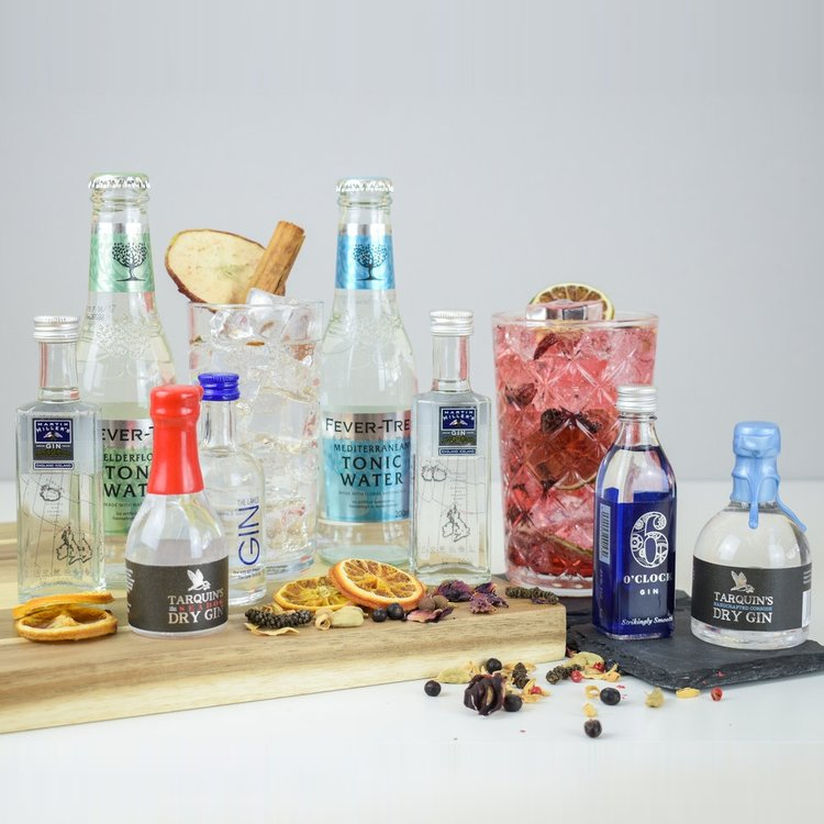 English Gin Discovery Gift Set with Premium Tonics (Makes 8 Gin & Tonics)