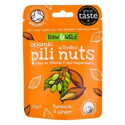 22g Tumeric & Ginger Raw Activated Pili Nuts Snack Pack Pouch