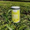 20 Classic Four Seasons Whole Leaf Pearl Oolong Tea in Tea Caddy