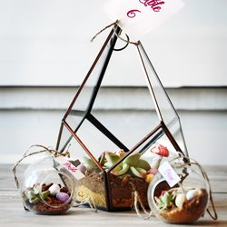 Edible Terrarium Centrepiece with Cake, Meringue & Chocolate (Gift & Wedding Centrepiece)