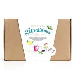 'Ginalicious' Gin Botanical Cocktail Garden Gift Kit with Infusion Bags & Growing Kit