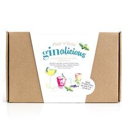 'Ginalicious' Gin Botanical Cocktail Garden Gift Kit with Infusion Bags & Growing Kit