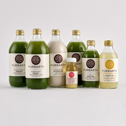 1 Day Alkaline Organic Body Cleanse Inc. Green Juices, Nut Mylk & Kefir (Candida Suitable)