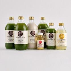1 Day Alkaline Organic Body Cleanse Inc. Green Juices, Nut Mylk & Kefir (Candida Suitable)