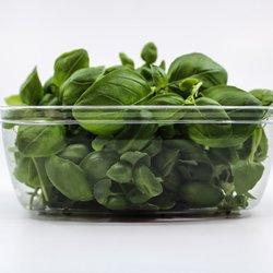Fresh Micro Basil Microgreens 30g