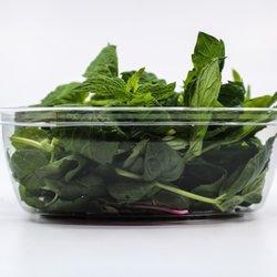 Fresh Micro Large Mint Microgreens 15g