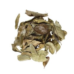 Organic Curry Leaves 100g