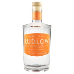 Spiced Ludlow Gin 70cl