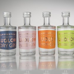 Ludlow Gin Miniatures Gift Set Inc. Dry, Pink, Spiced & Triple Gins (4 x 5cl)
