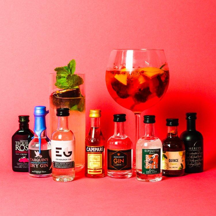 Premium Gin & Liqueur Cocktail Tasting Gift Set