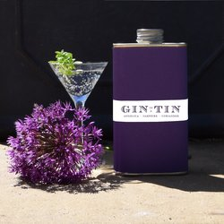 Angelica, Samphire & Coriander 'No. 8' Gin In A Tin 50cl