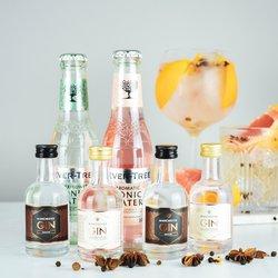 Manchester Gin & Tonic Gift Set Inc. Signature, Raspberry Pink Gins & Premium Tonic Waters