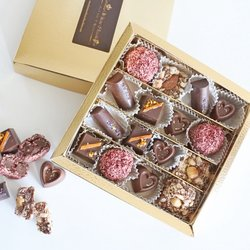 16 Piece Assorted Vegan Milk Chocolate Gift Box