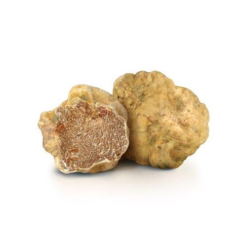 Fresh Italian White Truffles (Tuber Magnatum Pico) 50g