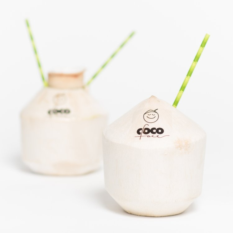Case of 6 Raw Coconuts