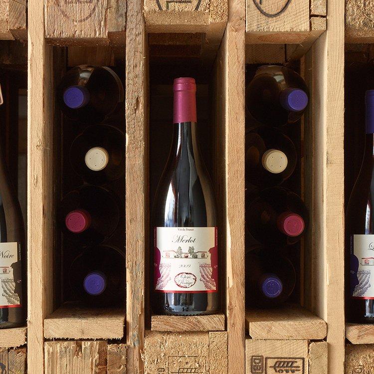 Organic Merlot Red Wine 2010 75cl