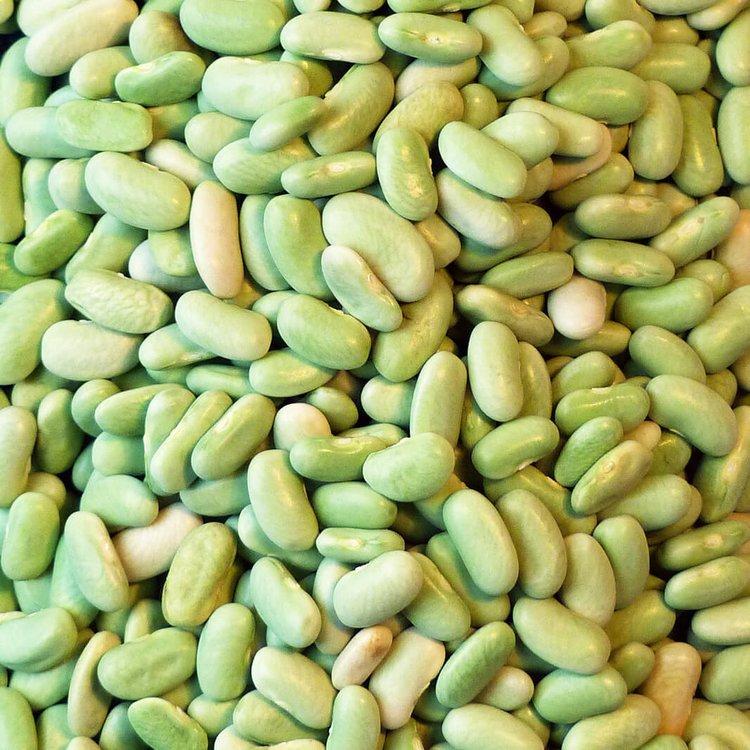 Flageolet Beans 200g