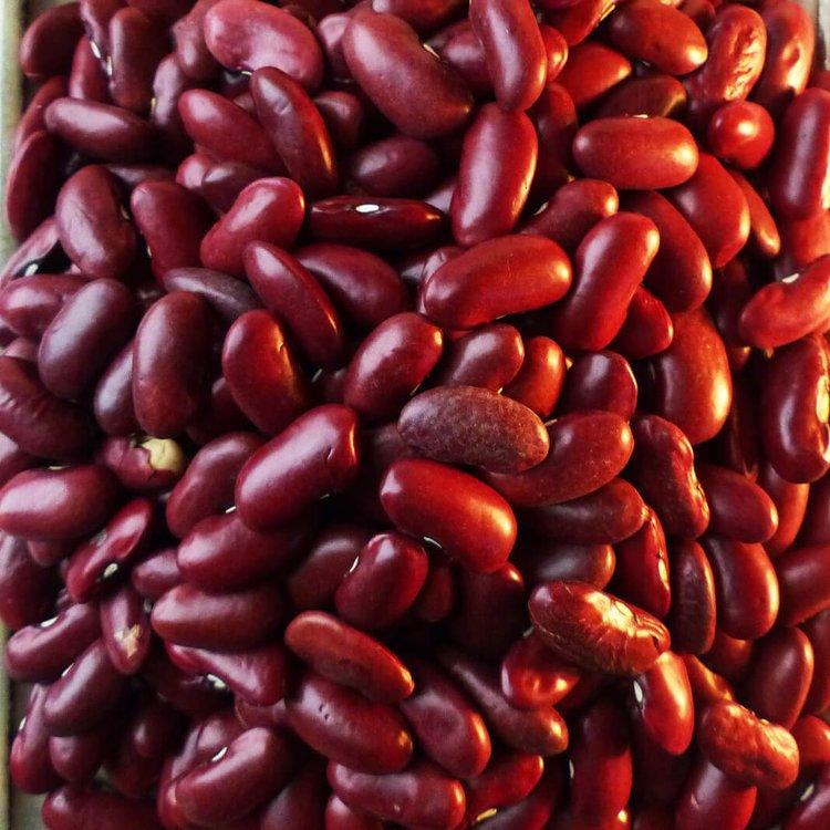 Red Kidney Beans 200g