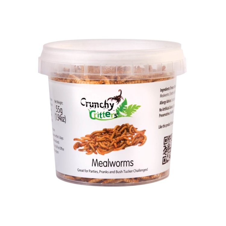 Edible Mealworms 55g