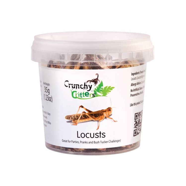 Edible Locusts 35g