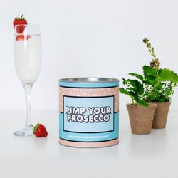 Grow Your Own Prosecco Garnish 'Pimp Your Prosecco' Gift Kit
