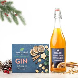 Christmas Spice Gin Infusion Kit