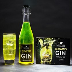 Glowing Gin Infusion Kit