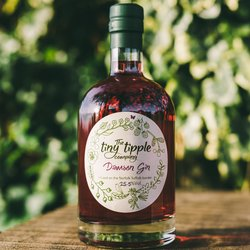 Damson Infused Gin Liqueur 500ml
