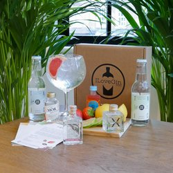 European Gin & Tonic Gift Set - Malfy, Elephant & Mor Irish Gin Miniatures
