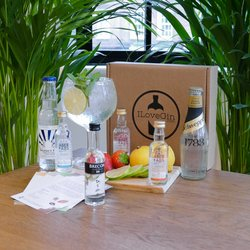Welsh Gin & Tonic Gift Set - Brecon & Aber Falls Gin Miniatures