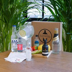 English Gin & Tonic Gift Set - Gin Miniatures Gift Set inc. 4 English Gins