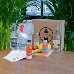Orange Flavoured Gin & Tonic Gift Set - Malfy, Boë, Aber Falls & Whitley Neill Gin Miniatures