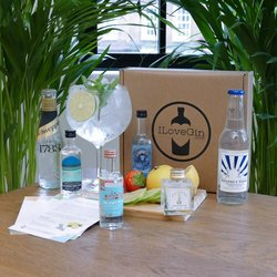 Classic Gin & Tonic Gift Set - Silent Pool, Greensand Ridge, Palmers 44 & Colonsay Gin Miniatures