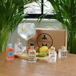 European Gin Tasting Gift Set - Malfy, X-Gin, Mor, Pin & Elephant Gin Miniatures