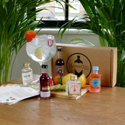 Pink Gin Tasting Gift Set - Mor, Malfy, Plamer, Whitley Neill & Colonsay Flavoured Gin Miniatures