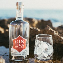 Gin Eva Signature Gin - Small Batch Spanish Gin - 70cl 45% ABV