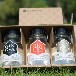 Spanish Gin Miniatures Gift Set by Gin Eva - Gin Tasting Gift Set with Gin Eva Signature, Bergamot and La Mallorquina Gins