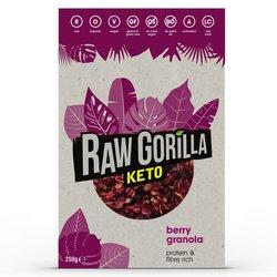 Raw Gorilla Berry Keto Granola 250g - High Protein Granola - 2 Boxes (Vegan, Organic & Gluten Free)