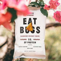 BBQ Protein Chips - 'Eat Bugs' Cricket Flour Tortilla Chips by Chirps Chips 142g