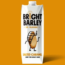 6 x Dairy-Free Salted Caramel Barley Drink 330ml - Vegan Milkshake Alternative by Bright Barley