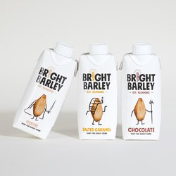 6 x Dairy-Free Mixed Flavoured Barley Drink 330ml - Vegan Milkshake Alternative by Bright Barley