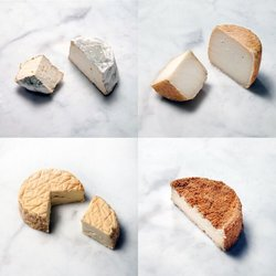Washed Rind Premium Cheese Selection