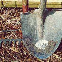 Gardener's Toolset