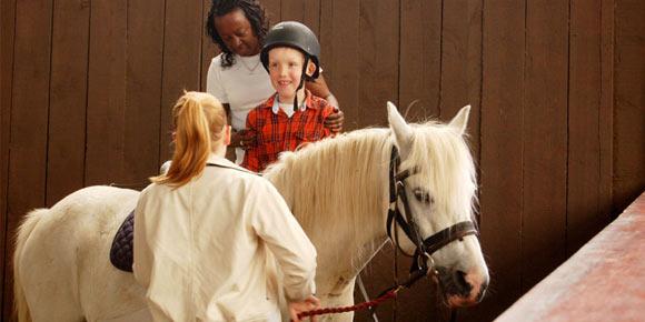stuart feakins trust horse riding