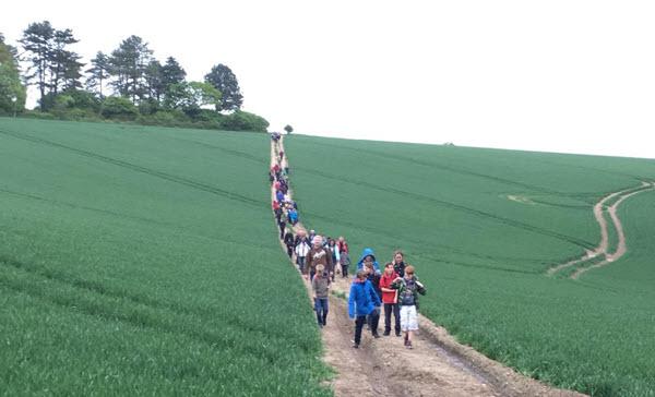 Barham scouts hiking